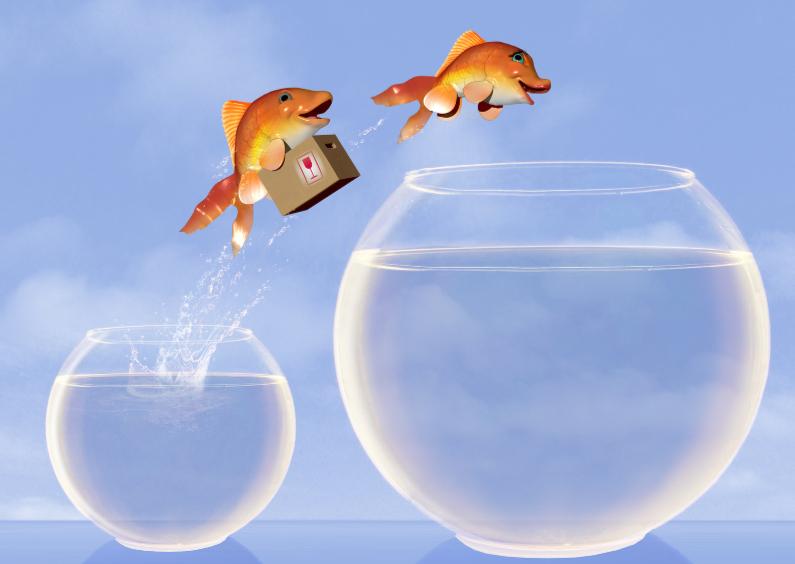 Springende vissen met verhuisdoos 1