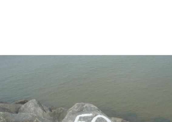 stenen aan zee 50 jaar getrouwd 2