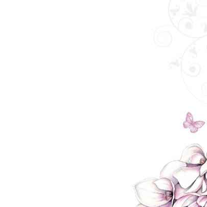 sterkte met magnolia 3