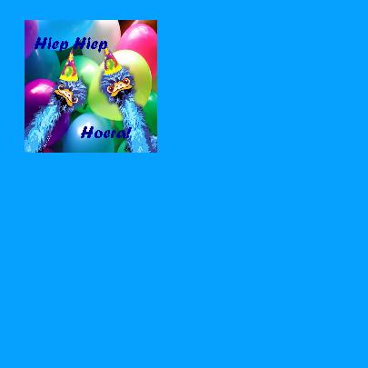 Struisvogel Verjaardag hoera 2