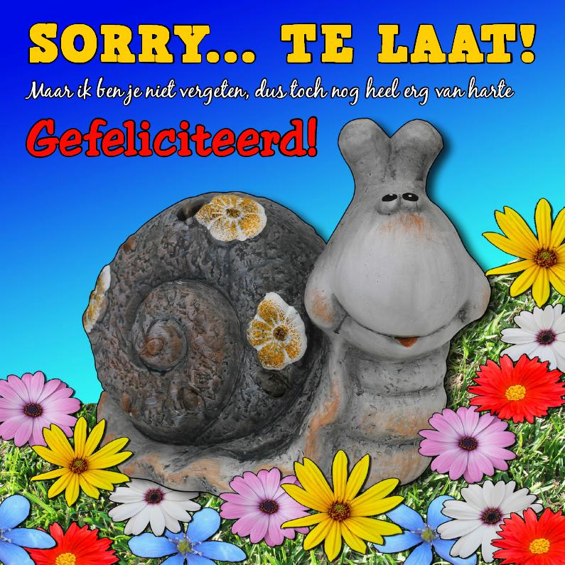 Te laat, sorry