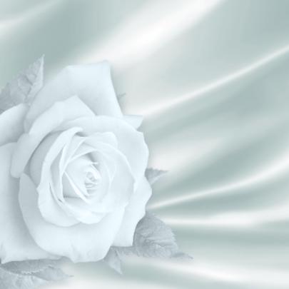 Trouwkaart met roos en hart wit 2