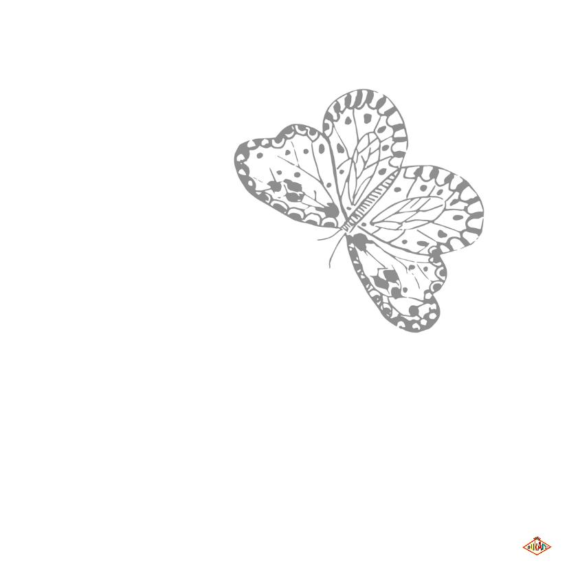 Trouwkaartvlinders PA 3
