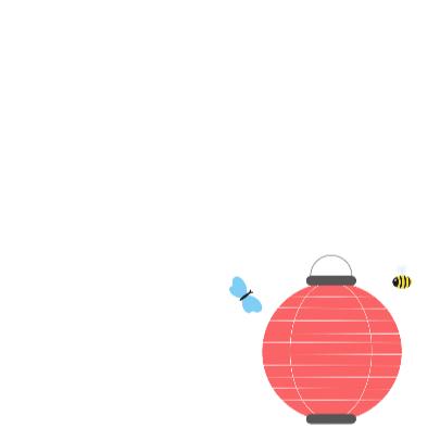 Tuinfeest lampion 1 3