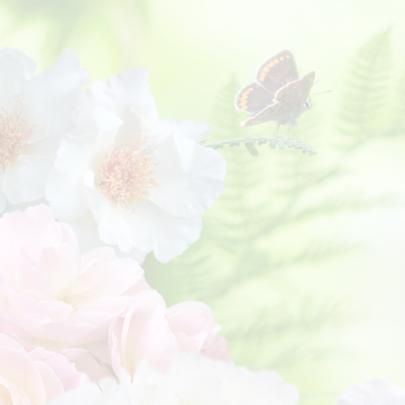 Uitnodiging met rozen 2 2