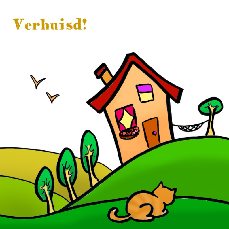 Verhuiskaart huis en kat 1