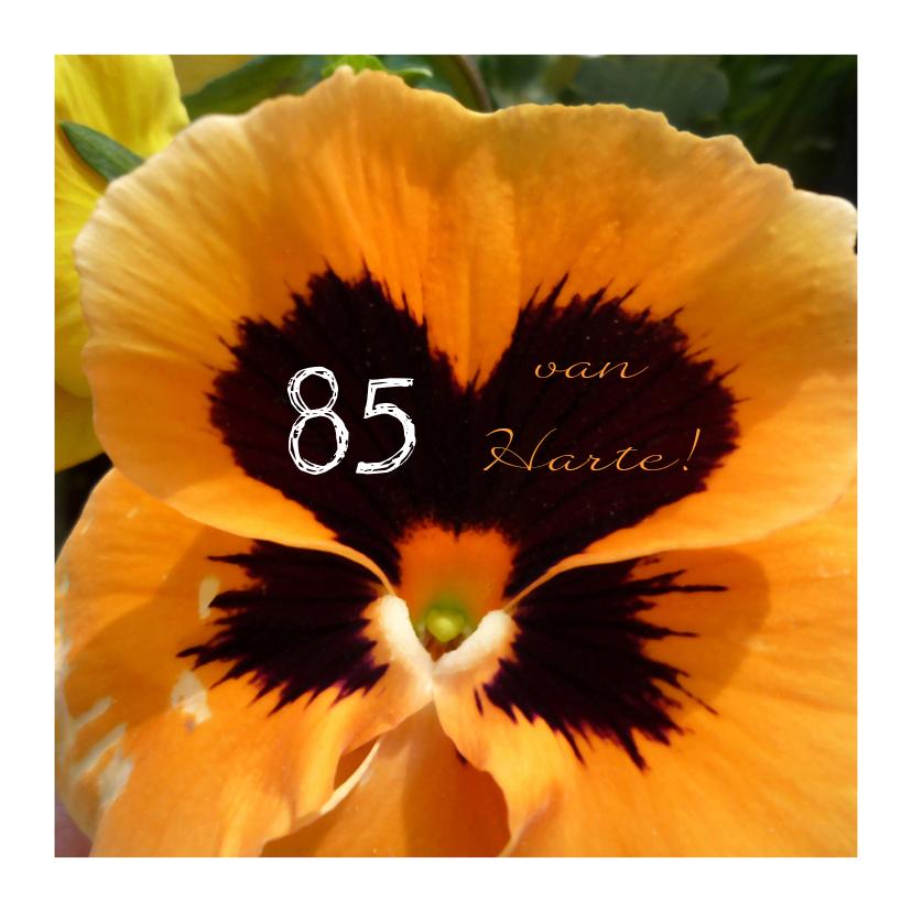 Verjaardag Hartelijk viooltje 1