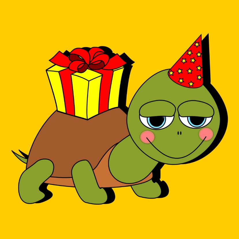Verjaardag schildpad met cadeau 1