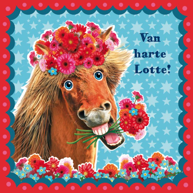 verjaardagskaart hip paard blauw rood 1