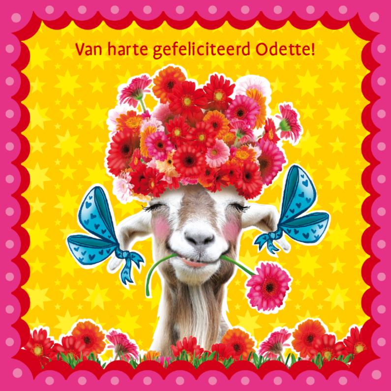 verjaardagskaart hippe geit 1