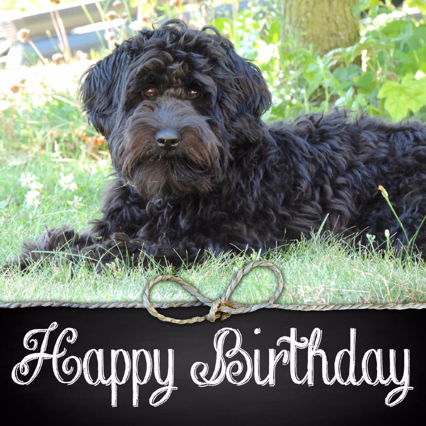 Verjaardagskaart hond Joey 1