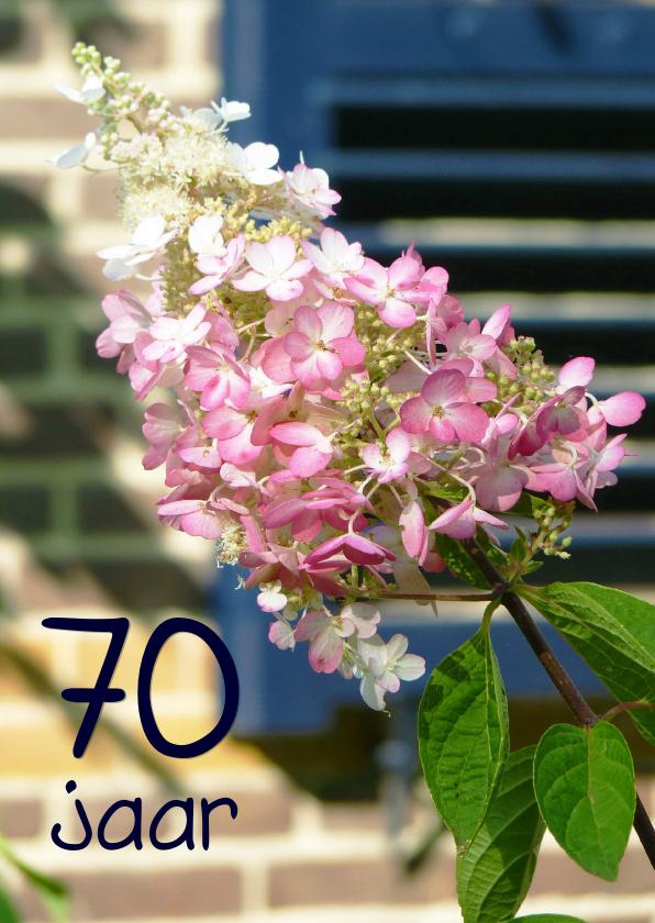 Verjaardagskaart Hortensia 70 jaar 1