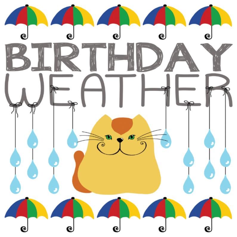 Verjaardagskaart kat in de regen 1