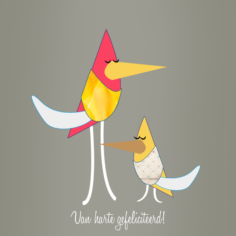 Verjaardagskaart met vogels 1