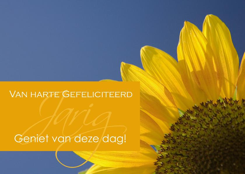 Verjaardagskaart met zonnebloem 1