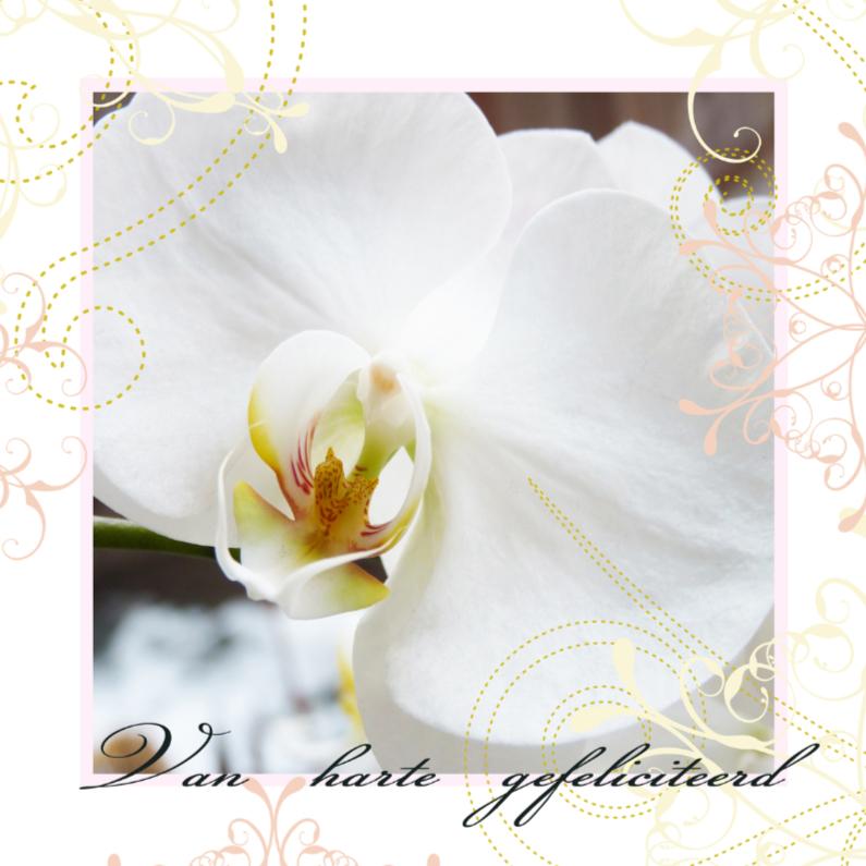 Verjaardagskaart Orchidee elegant 1