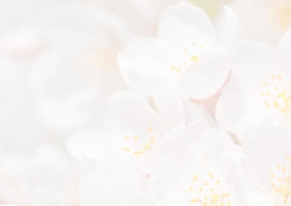Verjaardagskaart-Rhododendron 2