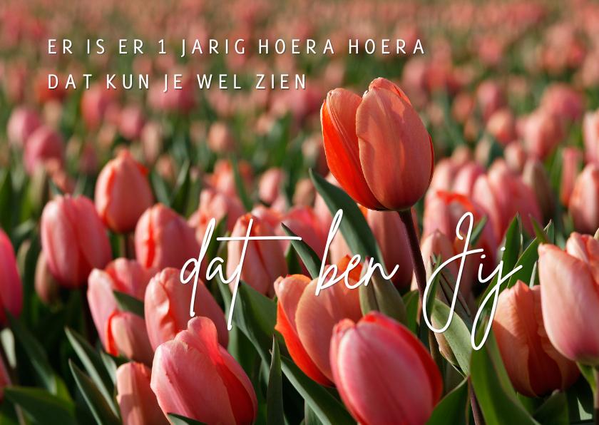 Verjaardagskaart rode tulpen OT 1