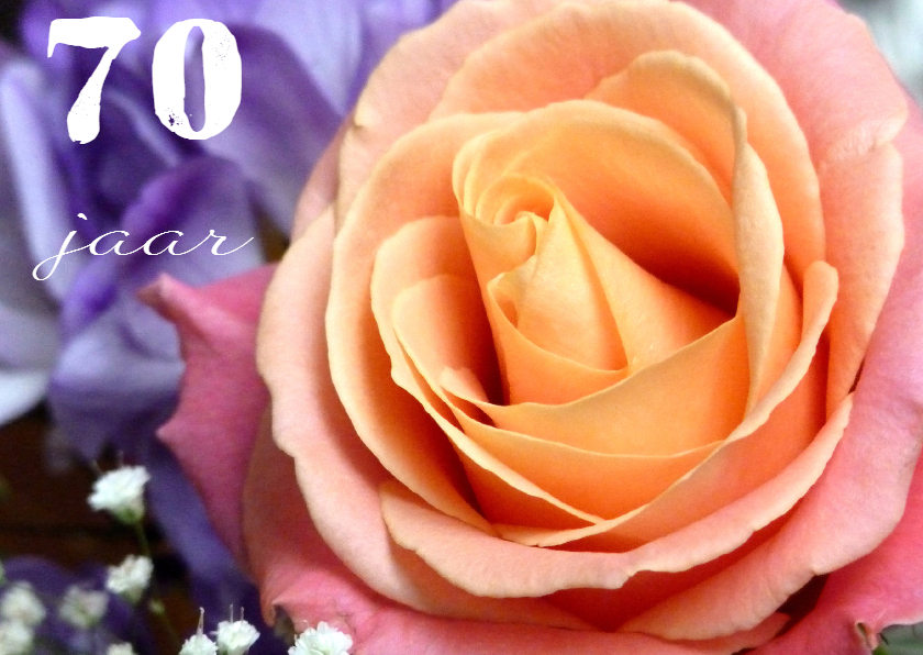 Verjaardagskaart roos 70 jaar 2 1