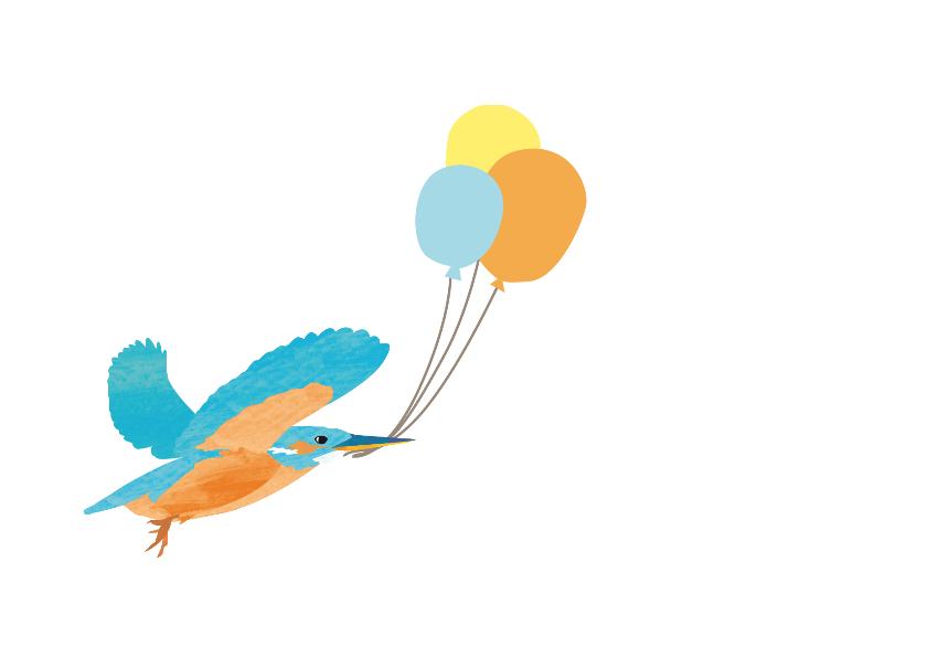 Verjaardagskaart slinger vogels 2