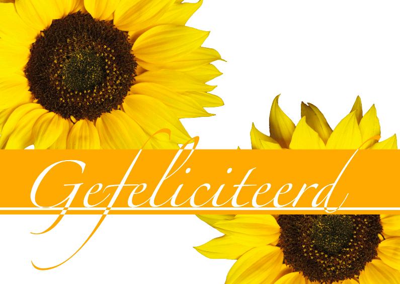 Verjaardagskaart Zonnebloemen 1
