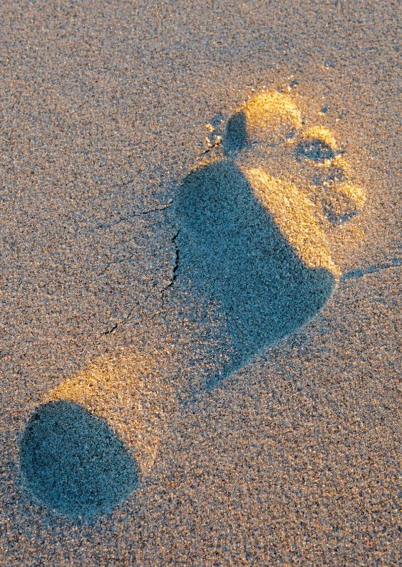 Voetstap in het zand 1