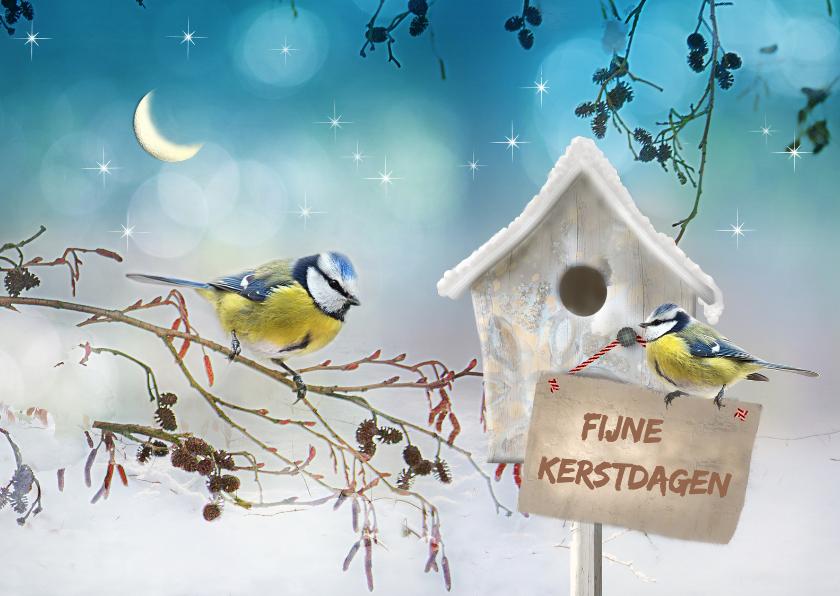 Vogelhuisje in de sneeuw -liggend- 1