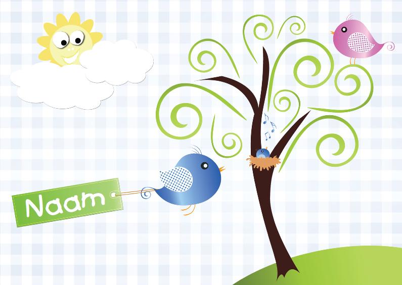 vogeltjes met nestje zon en naam jongen 1