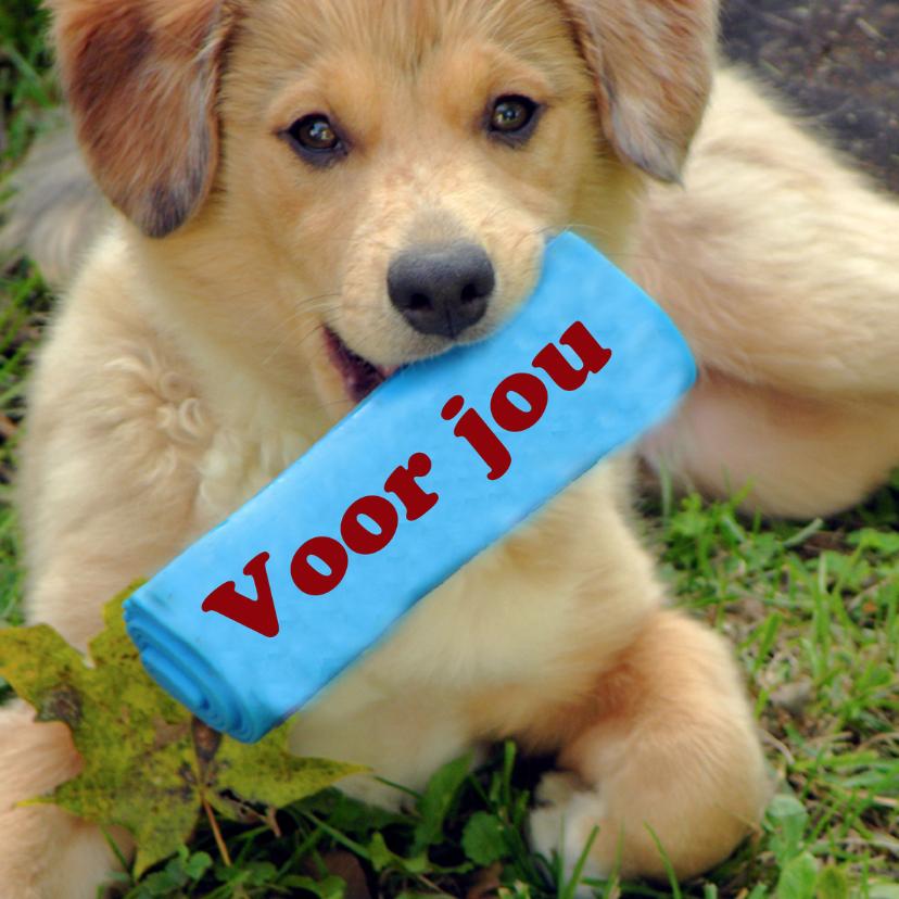 Voor jou pup 1