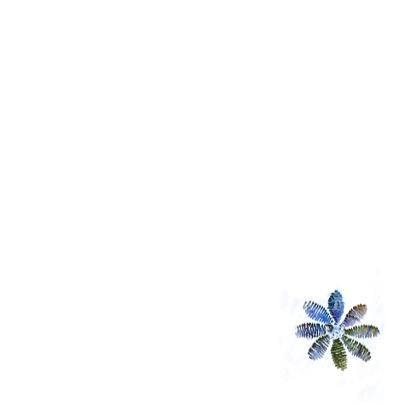 vrolijk blauwe bloemen 3