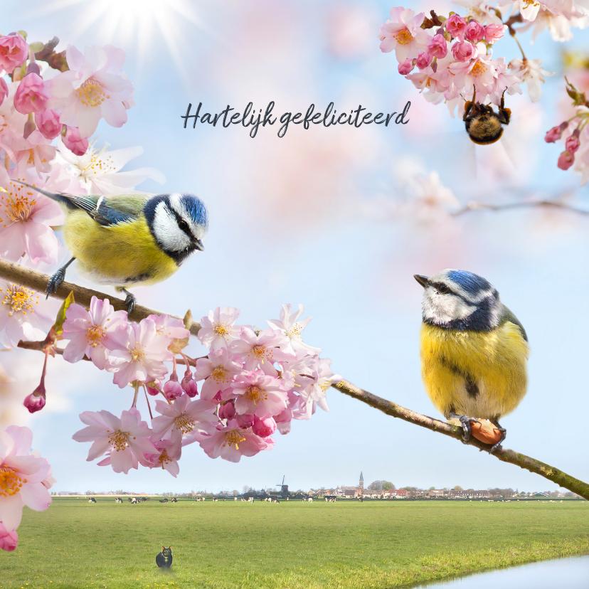 Vrolijke felicitatie met vogels 1