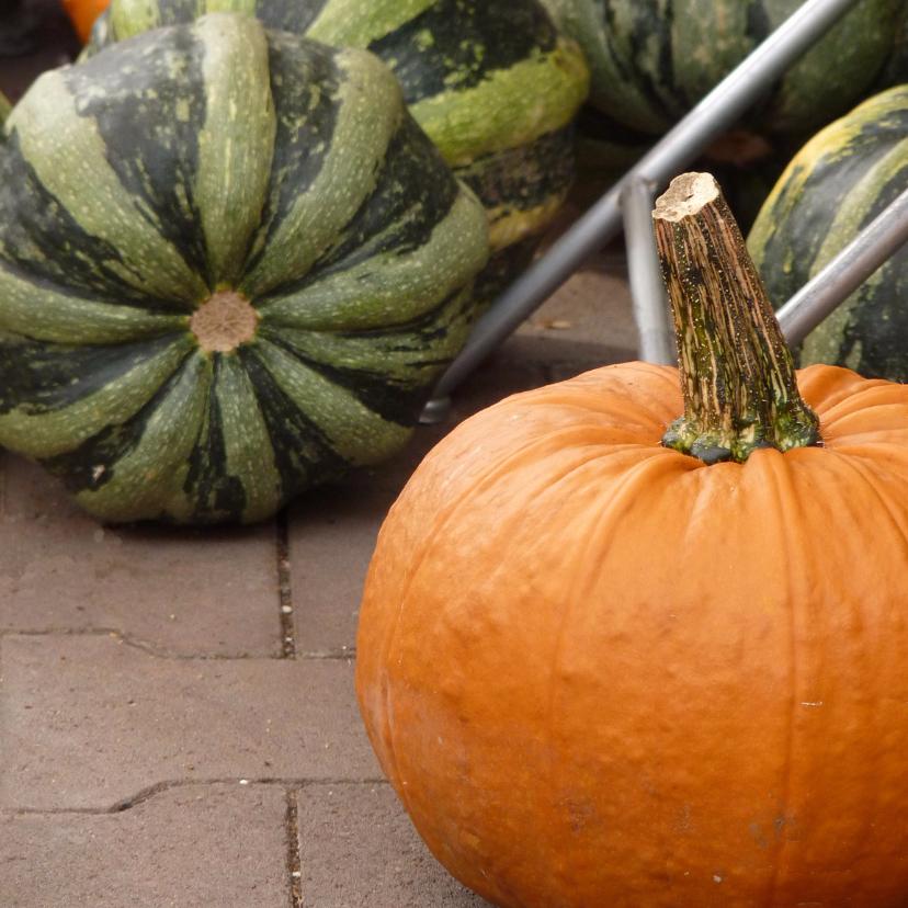 Wenskaart herfst pompoen
