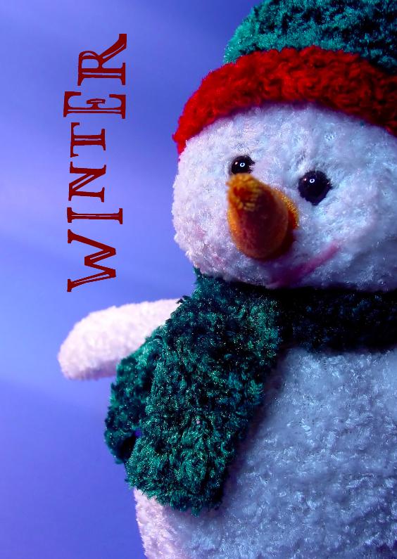 Winter Sneeuwpop 1