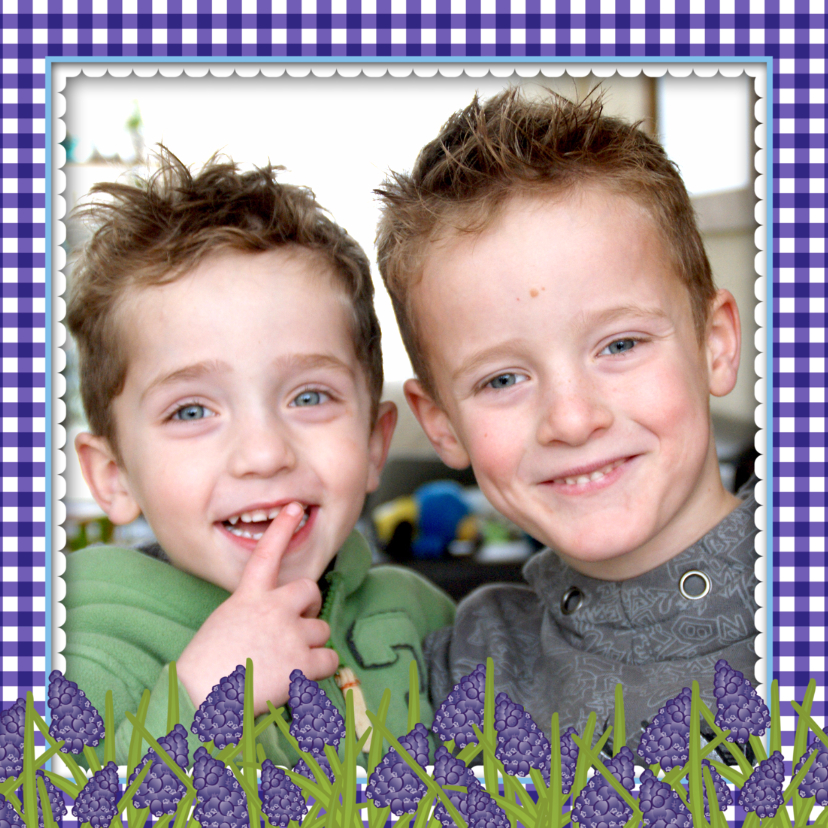 YVON blauwe druifjes fotokader 1