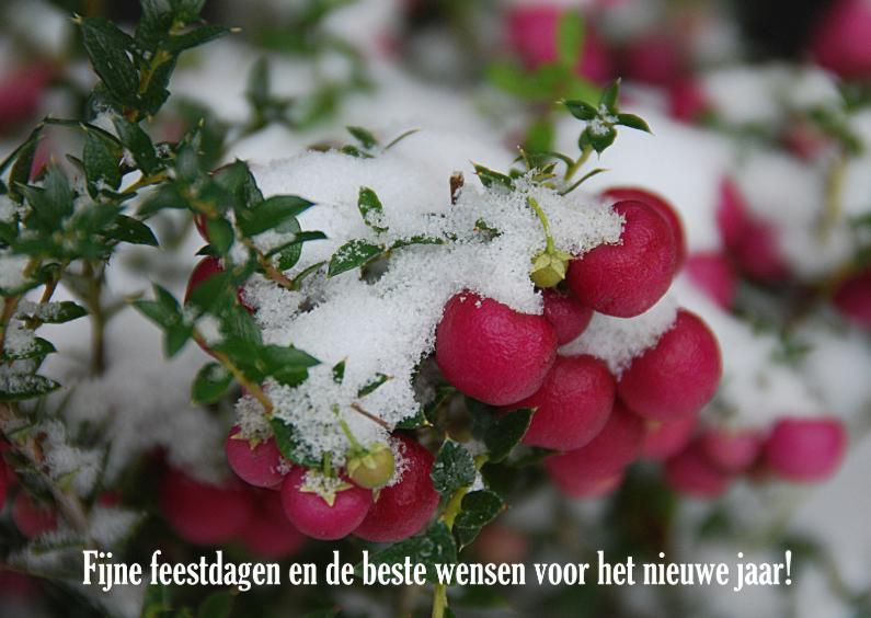 Kerstkaarten - 12048 Kerstkaart Sneeuw