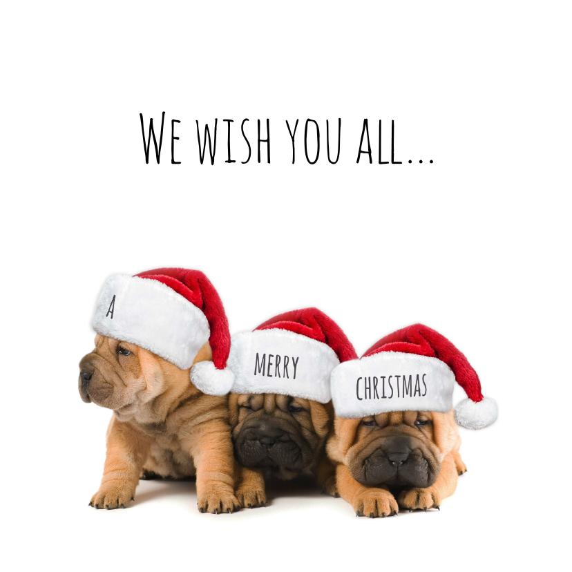Kerstkaarten - 3 hondjes kerstmuts-isf