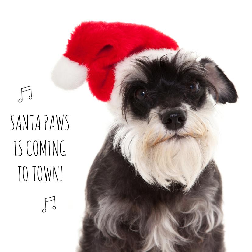 Kerstkaarten - Dieren kerstkaart - Hond - Paws