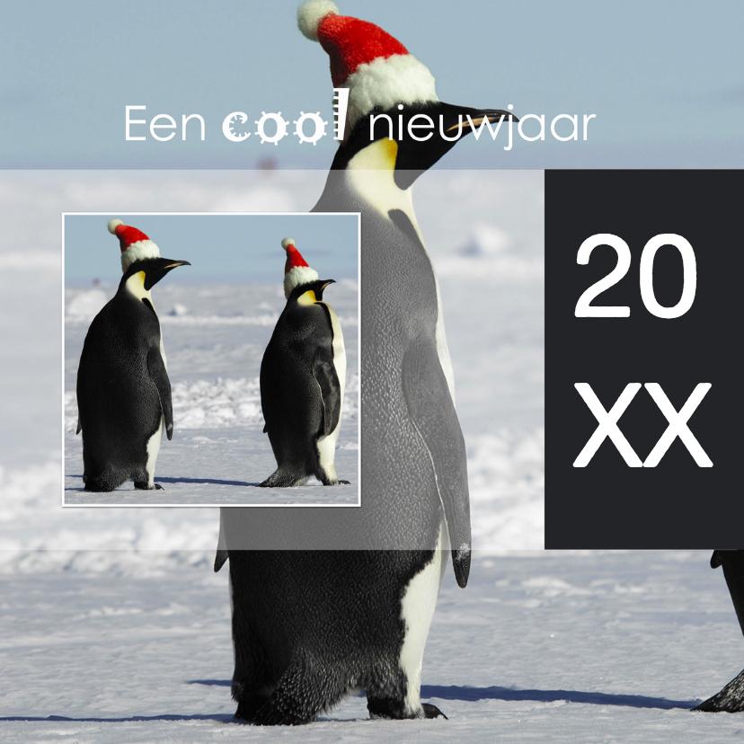Kerstkaarten - Een cool nieuwjaar 2