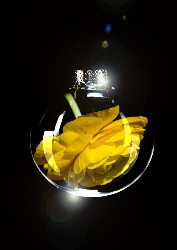Kerstkaarten - gele bloem in bal