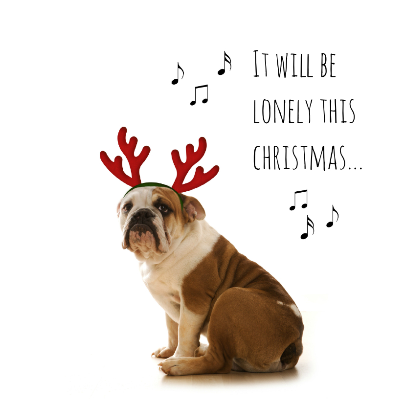 Kerstkaarten - Grappige hond met gewei-isf