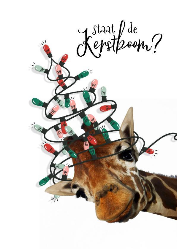 Kerstkaarten - Grappige kerstkaart giraf met kerstboom van lampjes