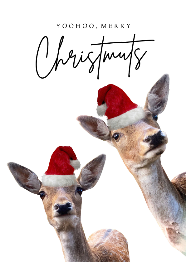 Kerstkaarten - Grappige kerstkaart met foto's van hertjes met kerstmuts op