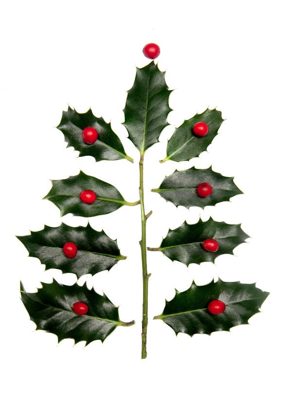 Kerstkaarten - hulstboom met besjes