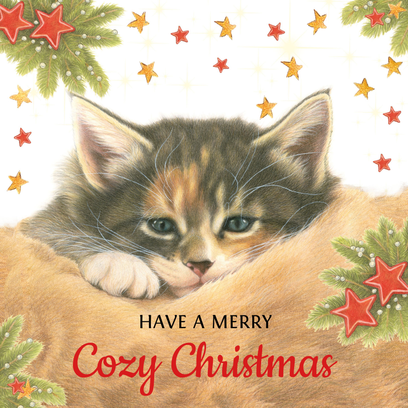 Kerstkaarten - Kattenkerstkaart Have a Cozy Christmas