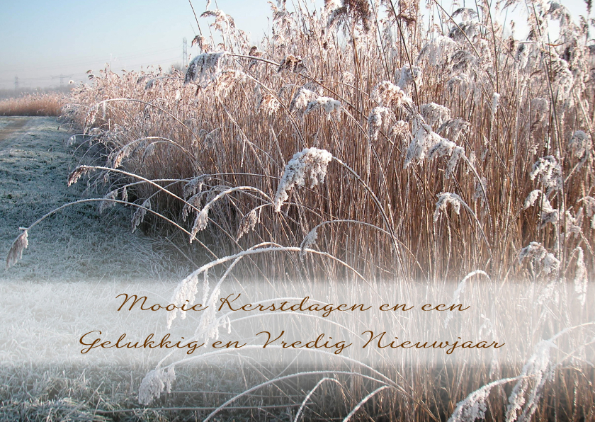 Kerstkaarten - Kerst vredig winters landschap