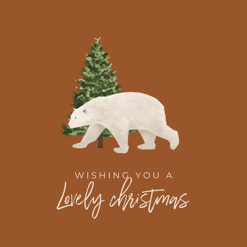 Kerstkaarten - Kerst / Wishing you a lovely christmas