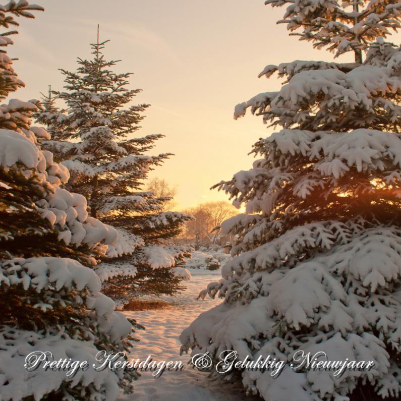 Kerstkaarten - Kerstbomen met sneeuw