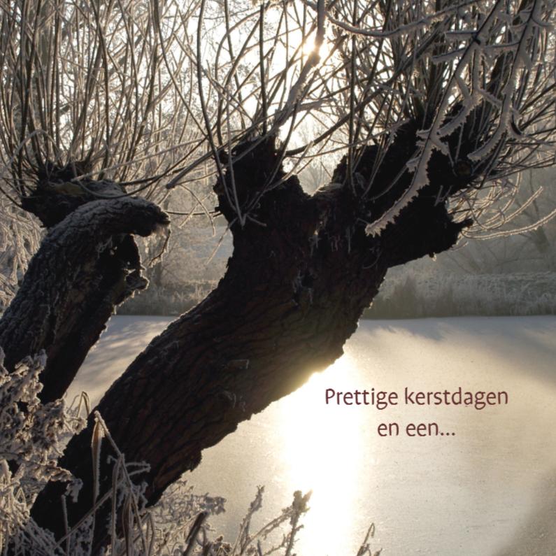 Kerstkaarten - Kerstkaart foto betoverde winter bomen