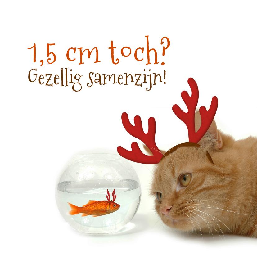 Kerstkaarten - Kerstkaart goudvis en kat