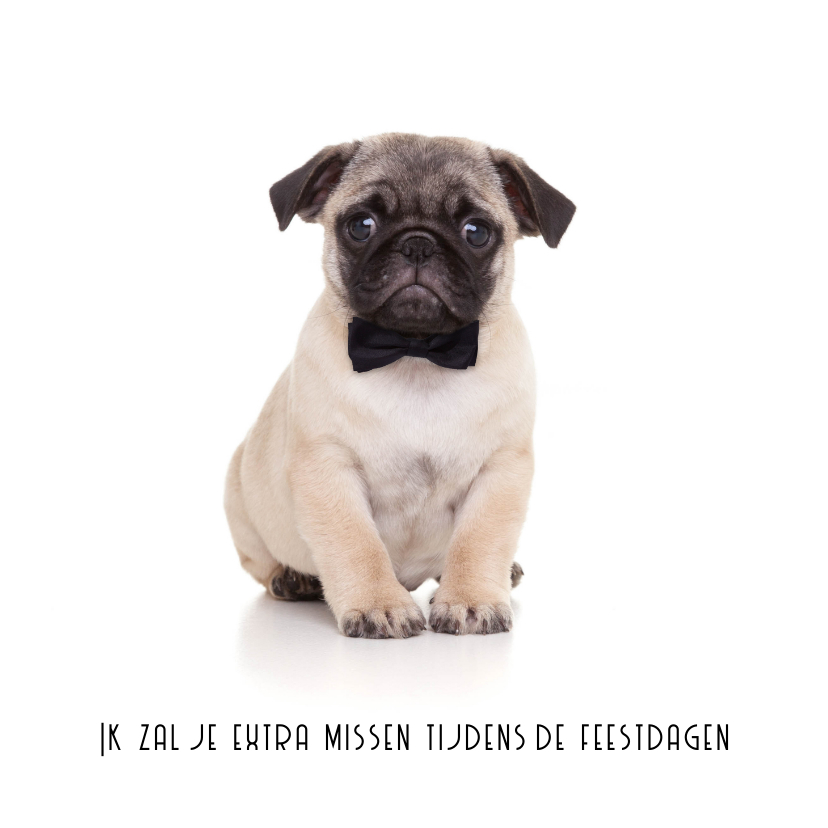 Kerstkaarten - Kerstkaart hond mopshond met strikje